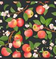 Boho botanical apple seamless pattern