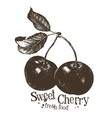 cherry logo design template fruit or fresh vector image