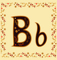 color letter b of the latin alphabet with a vector image vector image