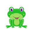 cute cartoon frog vector image vector image