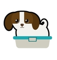 cute puppy little canine adorable bathtub vector image vector image