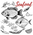 seafood fish with spices design elements for vector image