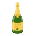 champagne bottle cartoon flat style vector image