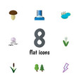 flat icon nature set of cascade forest floral vector image vector image