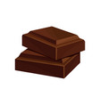 two pieces of dark chocolate vector image vector image