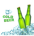 Beer Bottles And Ice vector image vector image