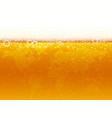 beer world background vector image
