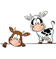 cow standing and peeks out from behind a white vector image vector image
