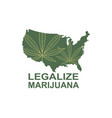 marijuana leaf on usa map vector image