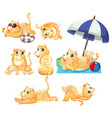 set of cat character vector image vector image
