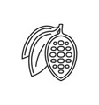 chocolate cocoa beans icon on white background vector image vector image