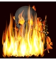 flames and skull vector image