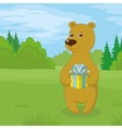 Teddy bear with gift on meadow vector image vector image