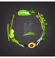 vitamin k in food vector image