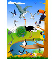 birds in nature vector image vector image