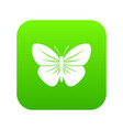 black butterfly icon digital green vector image