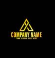 golden letter a emblem with black background vector image vector image