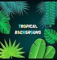 paper cut tropical2-03 vector image vector image