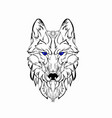 sketch design head wolf vector image vector image
