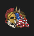 spartan armor and skull with an american flag back vector image