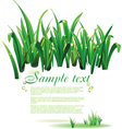 Template with green grass