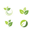tree leaf icon template vector image vector image
