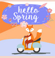 fox ride motorbike in summer time vector image vector image