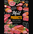 meat products poster for butchery shop or market vector image