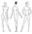sketch of women in different poses vector image