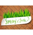 Spring sale label vector image vector image
