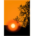 Sunset in trees vector image vector image