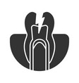 toothache glyph icon vector image vector image