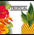 tropical flower leaves fruit card vector image vector image