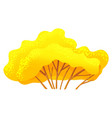 yellow bright autumn tree or bush with a lush vector image