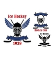 Ice hockey club icons with sport items vector image