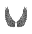 large angel wings gray feathers and black contour vector image vector image