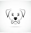 muzzle american bulldog on white background dog vector image vector image