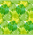 pattern green tropical leaves summer transparent vector image