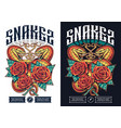 poster design with two snakes vector image vector image