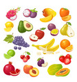 set tropical fruits color flat vector image