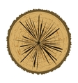 Tree Rings Background Wood Icon vector image