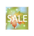 autumn discount price tag sale sign with maple vector image vector image