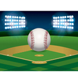 Baseball and Baseball Field vector image