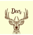 Brown horned deer head with ornament vector image vector image