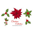christmas set with hand drawn plants vector image