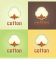 cotton isolated logo template vector image vector image