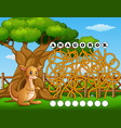 game kangaroo maze find way to the word vector image