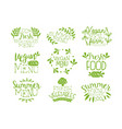 green hand drawn vegetable menu logos set vegan vector image vector image