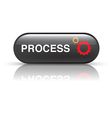 PROCESS icon vector image