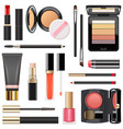 professional makeup cosmetics vector image vector image